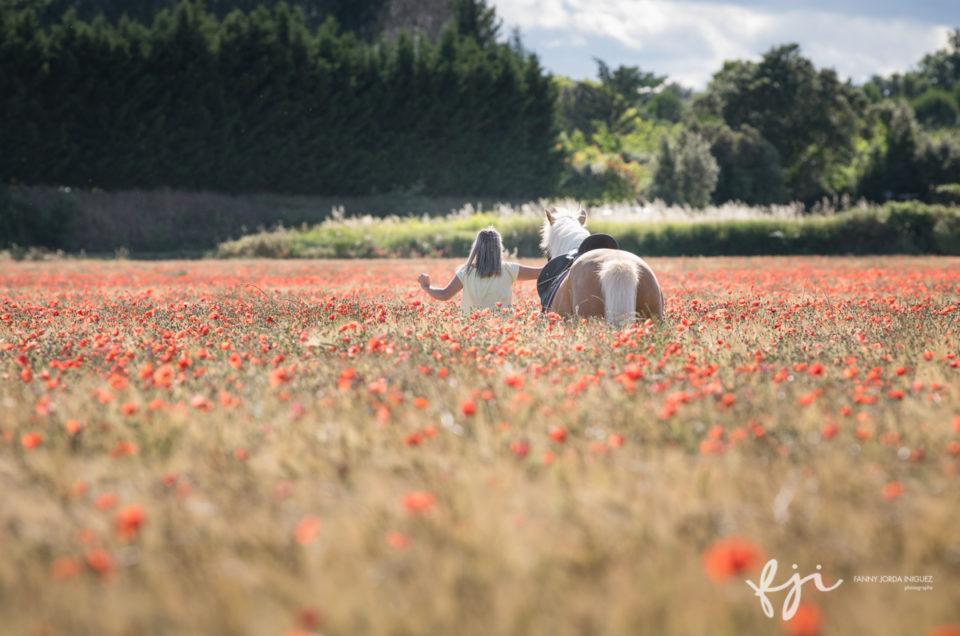 Jeune femme et cheval dans les blés